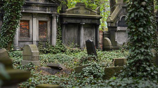Preguntas frecuentes en una funeraria